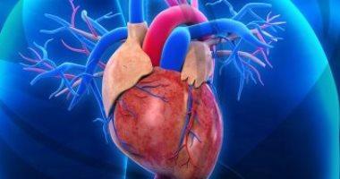 نصائح لجميع الفئات العمرية للحفاظ على قلب صحى وسليم