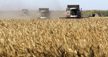الزراعة: وزارة الصحة المسئولة عن رفض 18 ألف طن قمح روسى لوجود حشرات